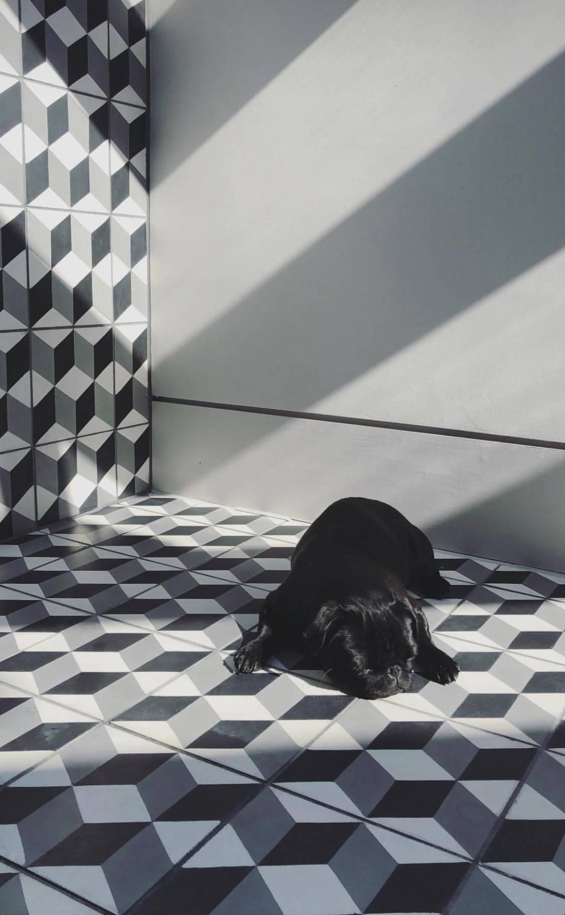 Vente De Carrelage Pour Mosaique De Galets Japonais Monaco Diffusion Ceramique