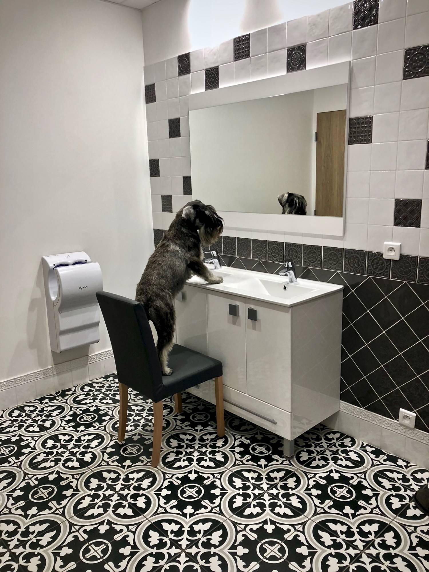 Vente de carreaux ciment pour salle de bain Lille - DIFFUSION
